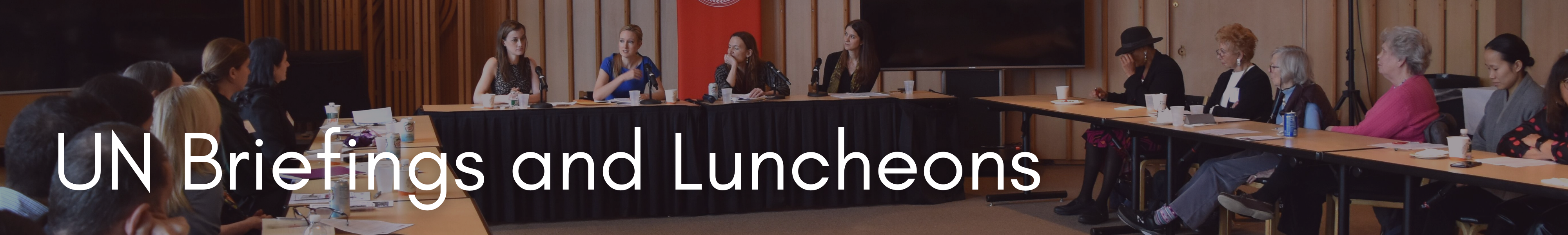 UN Briefings and Luncheons Banner